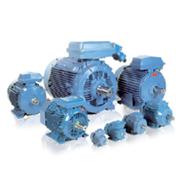 ABB IEC Low Voltage Motor